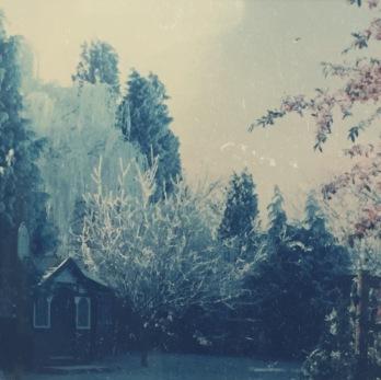 Queens Road Winter